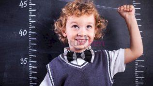 Beslenmenin Boy Uzatmaya Etkisi